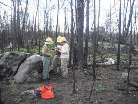 recording site web Survey of Pagami Creek Fire Locality